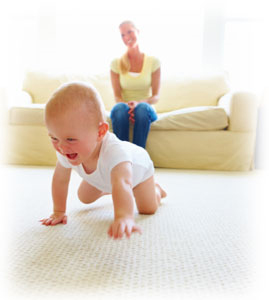 Carpet Cleaning Mill Valley, CA